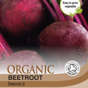 Beetroot Detroit 2 (Organic)
