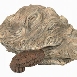 Wood Life Tortoise D