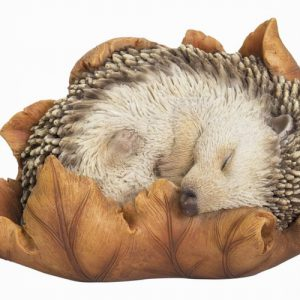 Baby Hedgehog in Leaf F