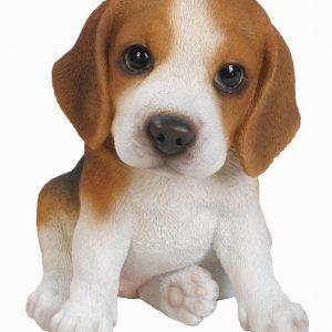 Beagler Puppy H17cm