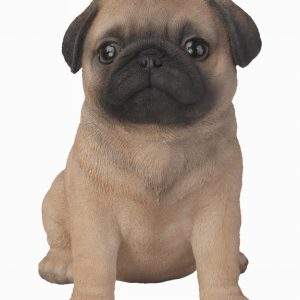 Pug Puppy H17cm