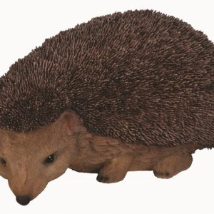 Real Life Hedgehog D