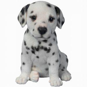 Dalmation Puppy H17cm