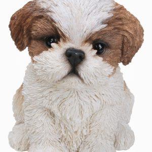 Shitzu Puppy H17cm
