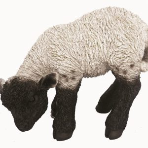Black / white lamb L31cm