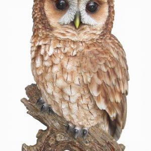 Real Life Tawny Owl H32cm