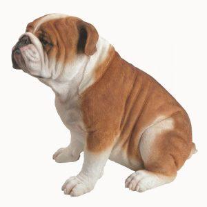 Bulldog L45cm
