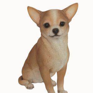 RL Chihuahua Small H24cm