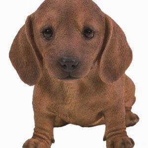 PP Brown Dachshund Puppy L21cm
