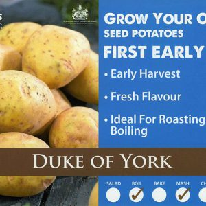 CARRIPACK SEED POTATOES 2KG DUKE OF YORK 35-60