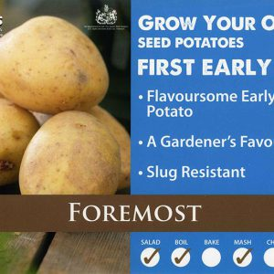 CARRIPACK SEED POTATOES 2KG FOREMOST 35-60