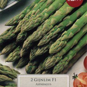 Asparagus Gijnlim F1