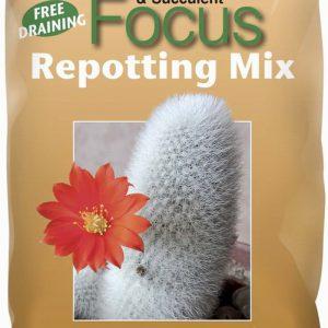 Cactus Repotting mix 2 Ltr