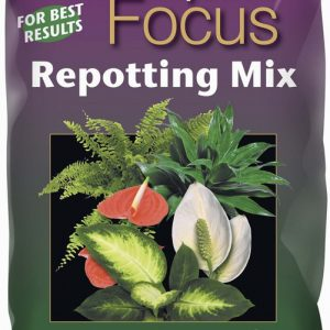 Houseplant Focus Repotting Mix 2l