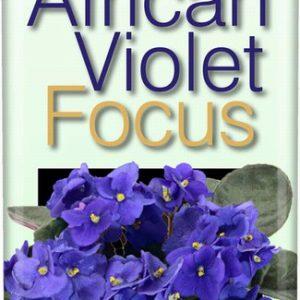 African Violet Focus 100ml