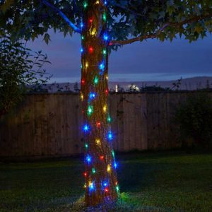 Firefly String Lights – 100 Multi Coloured LEDs