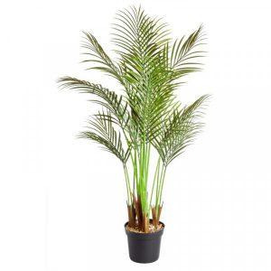 Phoenix Palm 124 cm