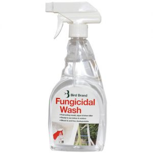 Patio Fungicidal Wash