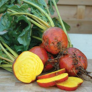 Beetroot Golden Plants