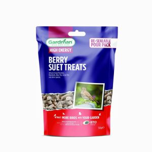 GM Berry Suet Treats 550g