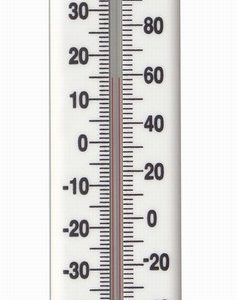 215mm Plastic Thermometer