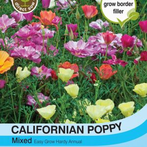 Californian Poppy Mixed