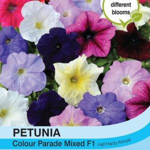 Petunia Colour Parade Mixed F1 Hybrid