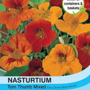 Nasturtium Tom Thumb Mixed