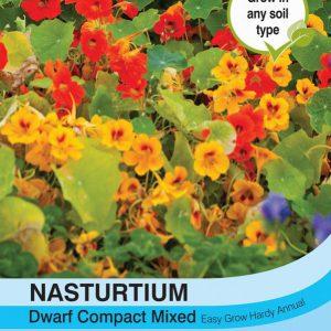 Nasturtium Dwarf Compact Mixed